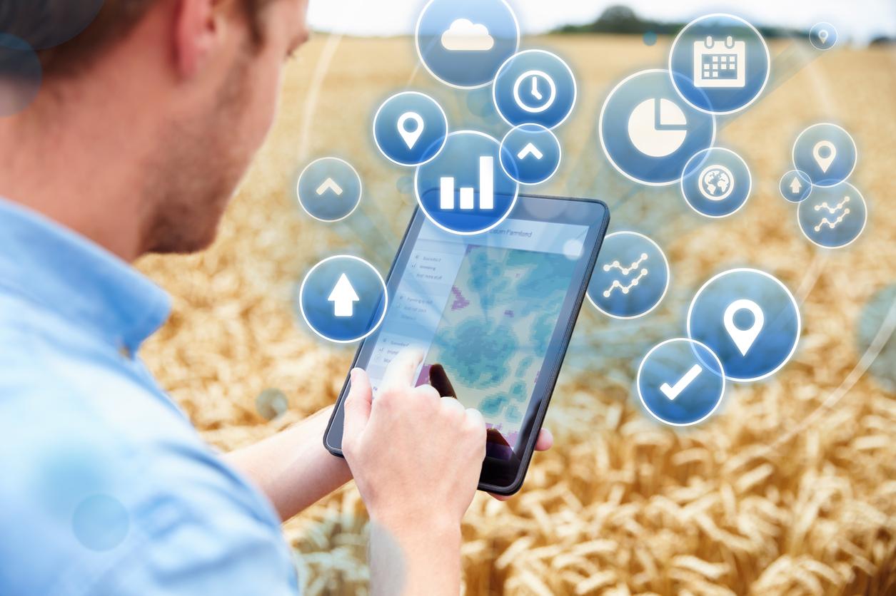 Agriculture : comment l'IoT répond aux plus grands défis écologiques ?